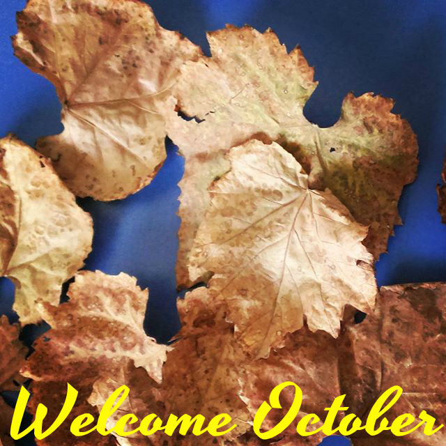 welcome-october-fall-2015