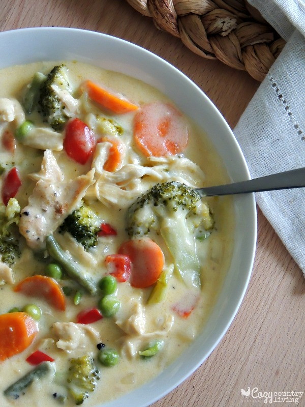 chicken and vegetable soup recipes for winter