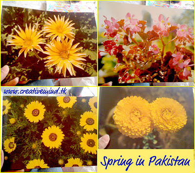 Spring In Pakistan