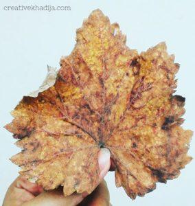 fall-leaves-photography-creative-khadija