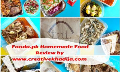 homemade-foodupk-service-food-review-blog-islamabad