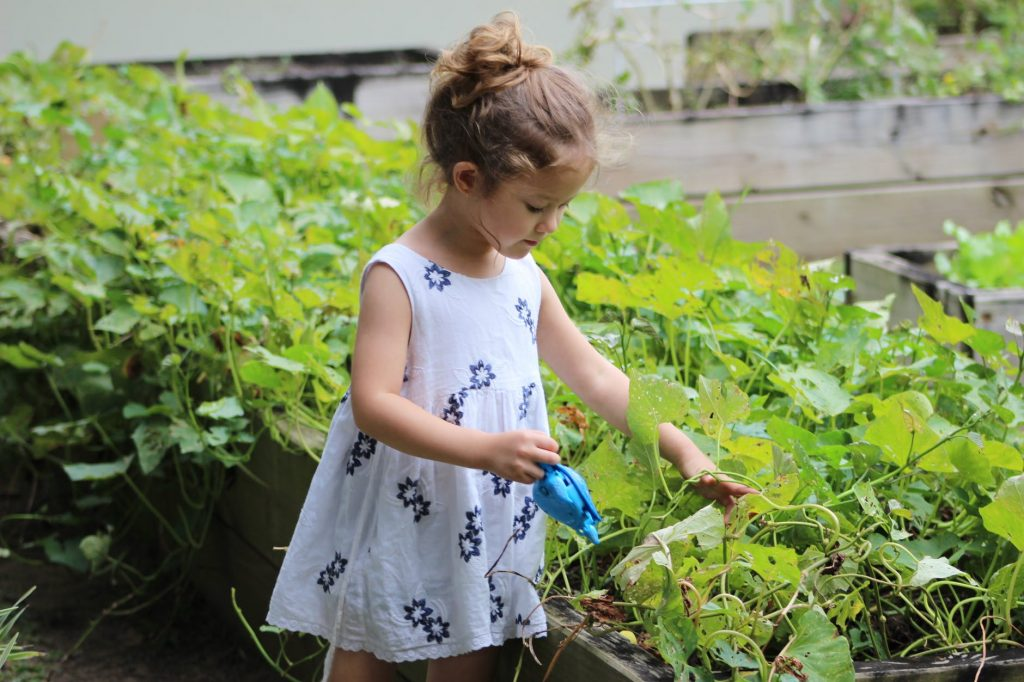 3 Fun Activities for Kids with Gardening Essentials