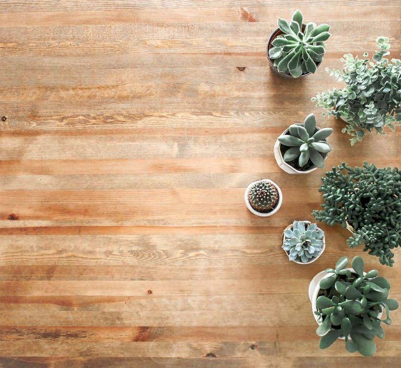 home renovation ideas get new flooring