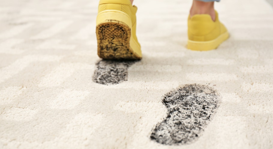 homemade carpet cleaner for mud stains