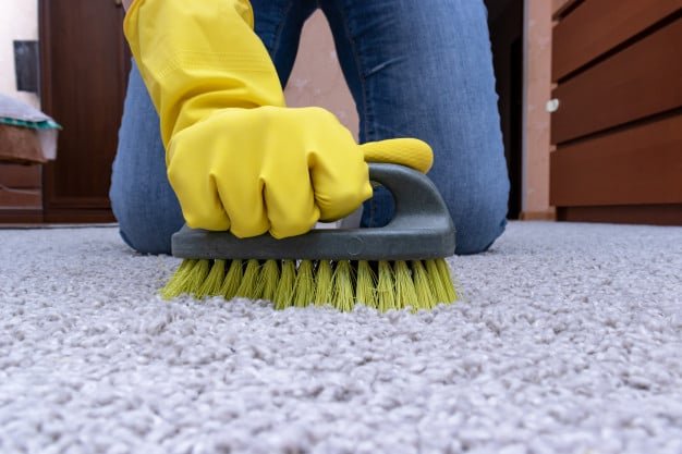 spring cleaning list to remove makeup stains from carpet
