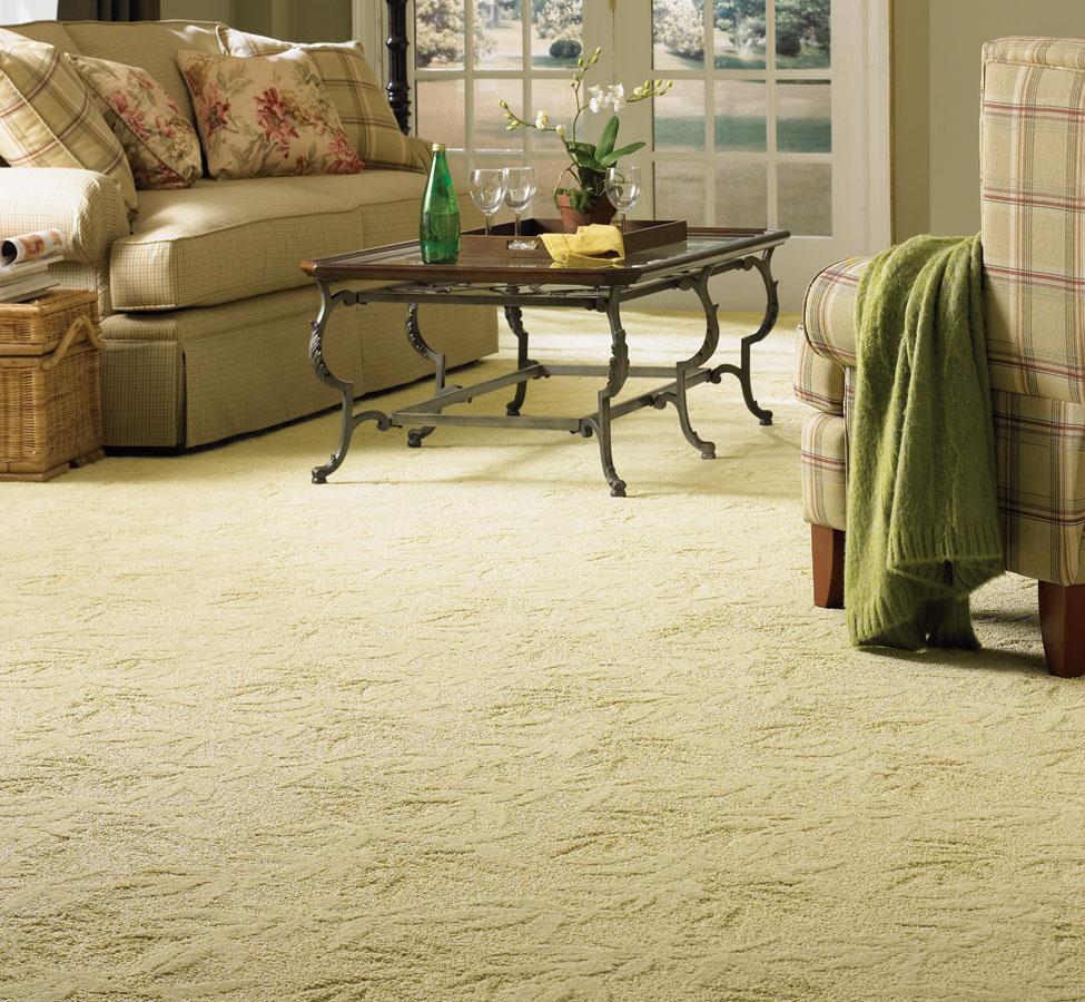 multi purpose cleaner for carpet