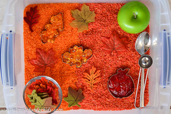 sensory fall activities to keep the toddlers busy rice bin