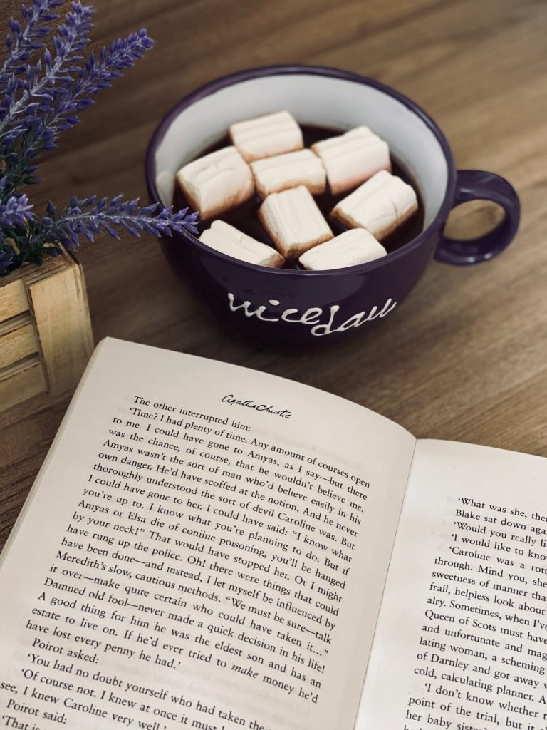 lazy indoor things to do for adults book reading