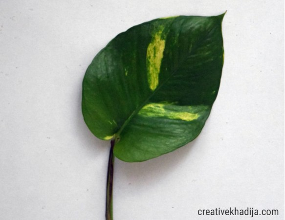 easy and best way to paint a leaf
