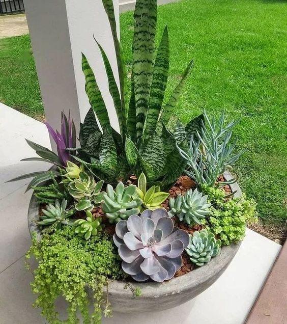 front garden ideas fairy garden
