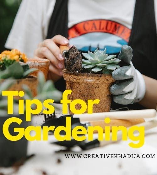 Front-Garden-Ideas-Tips-For-Gardening
